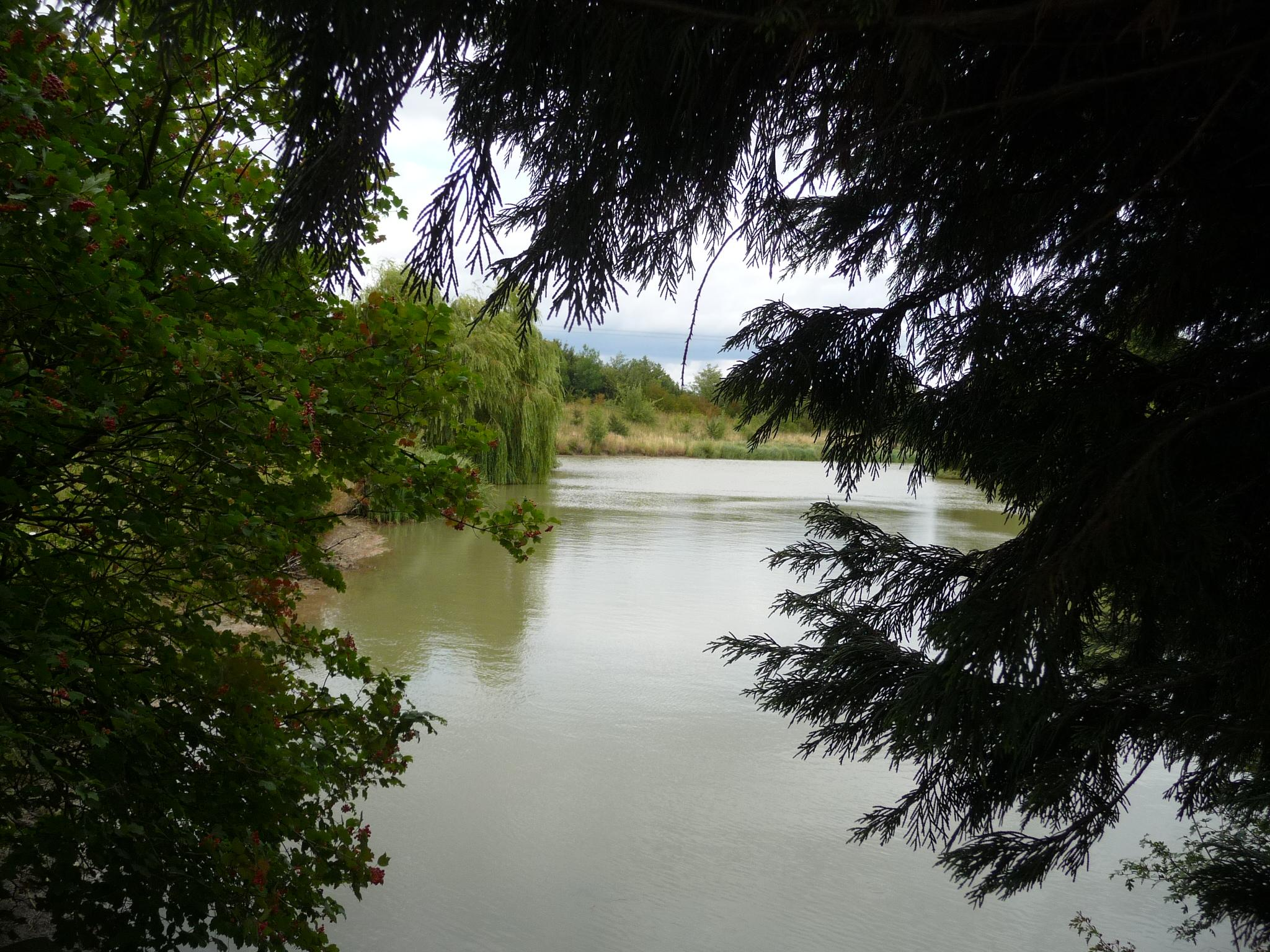 View of the fishing lake 2011